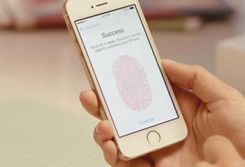 手机指纹识别功能苹果第一 无人第二
