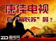 逆水行舟!四问康佳,2016年如何打好翻身仗?