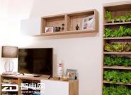 想要蔬菜绿色环保还要有机 试试这个书柜!