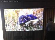 奥图码激光家庭影院投影升级版亮相CES