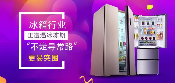 """冰箱行业正遭遇冰冻期 """"不走寻常路""""更易突围"""