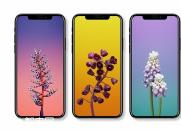 侃哥:苹果自曝全新一代iPhone隐私 竟打脸众人?