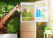 小家庭空间小  三门三温风冷无霜冰箱是首选