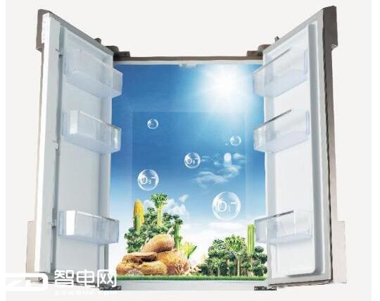 AAT负离子养鲜技术 食材新鲜水润更出众