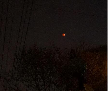昨晚的红月亮已经炸锅了 我拍的红月亮肯定是假的