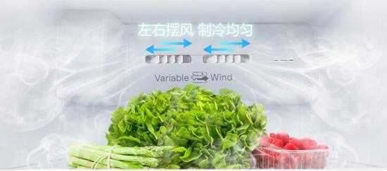 TCL 520升双变频对开门冰箱 一台保鲜效果好的冰箱