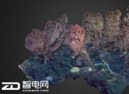 水族馆利用VR让用户身临其境地探索真实深海世界