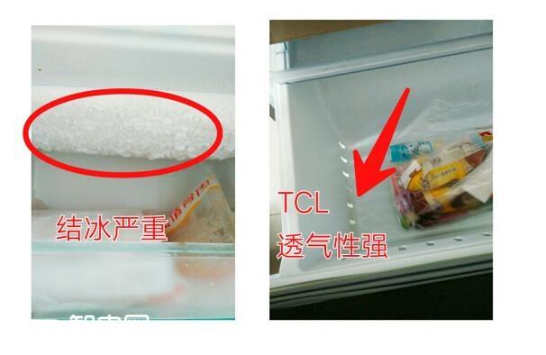 遇见TCL冰箱:给家人最健康的呵护与陪伴