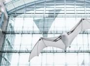 能飞的仿生机器人你见过吗? BionicFlyingFox即将亮相WRC2018