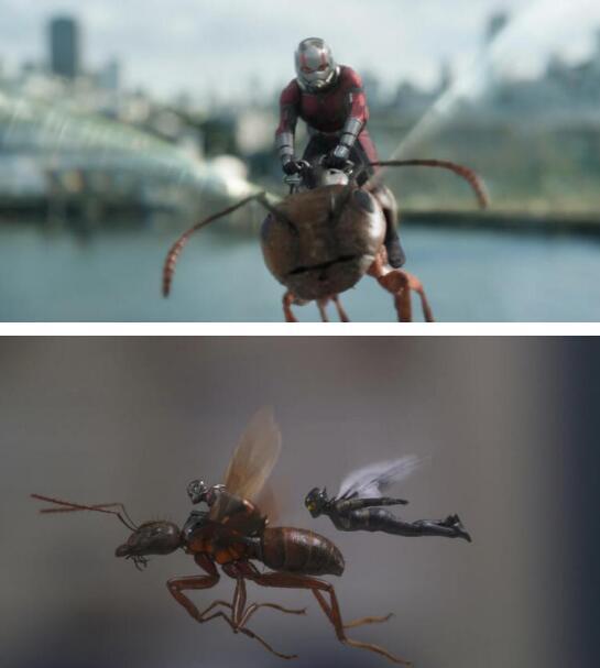 用创维55R8U观看《蚁人2:黄蜂女现身》  你不容错过