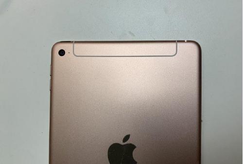 疑似新款iPad mini曝光 外观变化不明显