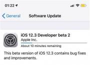 今日苹果推送iOS 12.3开发版Beta 2,新增AirPods 识别功能!