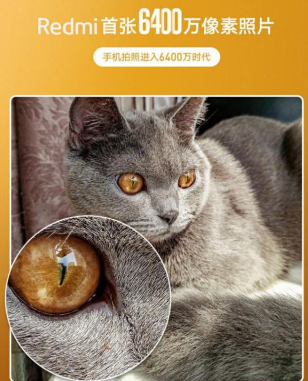 Realme徐起晒出6400W像素样片海报,或和Redmi抢首发
