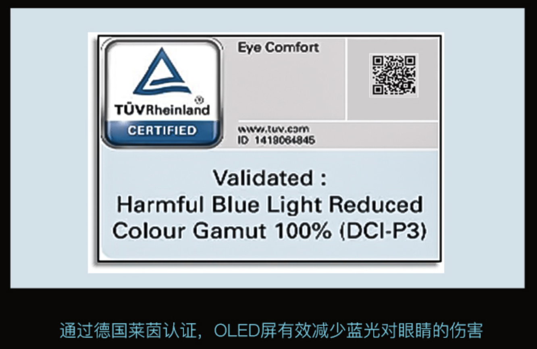 4K OLED加持 神舟战神Z7-CT7Pro预售火爆开启