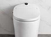 新房卫生间装修 可以考虑全自动一体式智能马桶