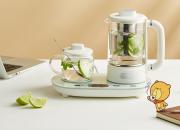 有了小熊煮茶器  不辜负每一口茶香