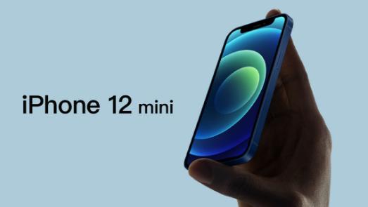 为什么买iPhone 12 Pro Max   不买12 mini?