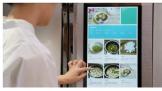 叮咚买菜+半成品食材+智屏冰箱  不怕做不出妈妈的味道
