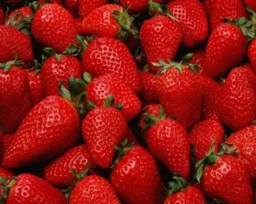 2021年选什么冰箱  除味、养鲜、除菌等功能冰箱作为主打