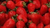 2021年选什么冰箱  除味、养鲜、除菌等功能作为主打
