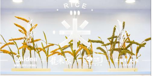低糖电饭煲横空出世  米饭品质评价技术规范出台